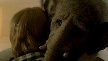 Слон (Elefante) смотреть на Tvigle.ru