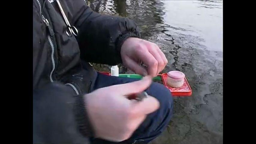 посмотреть видео диалоги о рыбалке