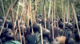 Первая серия. Затерянное племя смотреть на Tvigle.ru