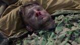 Стрелок. Серия 3 смотреть на Tvigle.ru