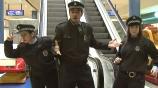 Застывшие охранники смотреть на Tvigle.ru